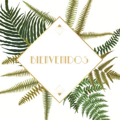 Diseño de la Banderola de Bienvenida Helechos